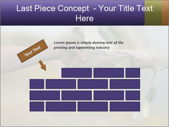 0000060343 PowerPoint Template - Slide 46