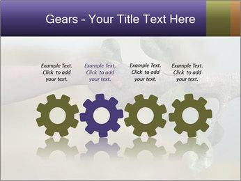 0000060343 PowerPoint Templates - Slide 48