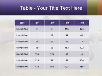 0000060343 PowerPoint Templates - Slide 55