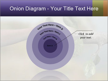 0000060343 PowerPoint Template - Slide 61