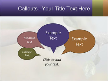 0000060343 PowerPoint Templates - Slide 73