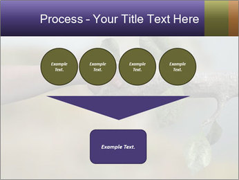 0000060343 PowerPoint Template - Slide 93