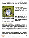 0000060343 Word Templates - Page 4
