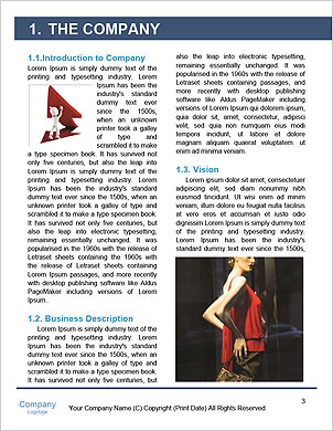 0000060344 Word Template - Page 3