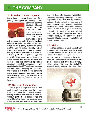 0000060353 Word Template - Page 3