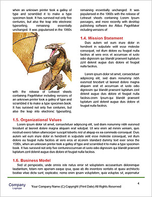 0000060362 Word Template - Page 4