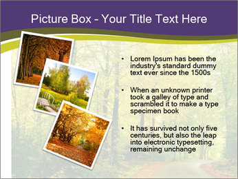 0000060388 PowerPoint Templates - Slide 17