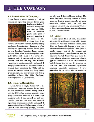 0000060388 Word Template - Page 3