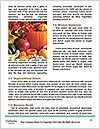 0000060393 Word Template - Page 4