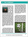 0000060394 Word Template - Page 3