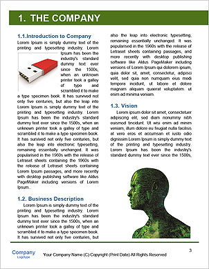0000060396 Word Template - Page 3