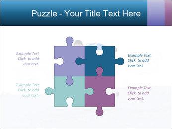 0000060399 PowerPoint Templates - Slide 43