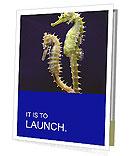 0000060428 Presentation Folder