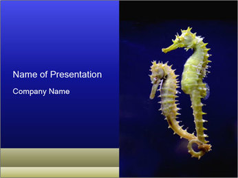0000060428 PowerPoint Template - Slide 1