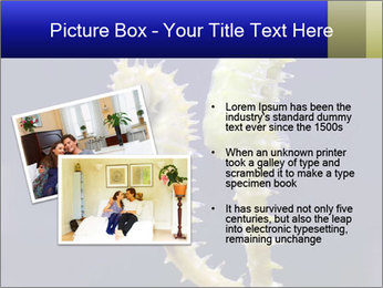 0000060428 PowerPoint Template - Slide 20