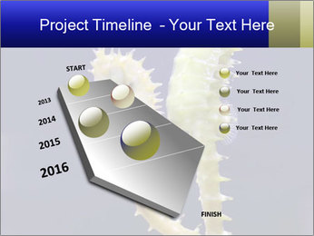 0000060428 PowerPoint Template - Slide 26
