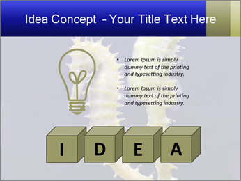 0000060428 PowerPoint Template - Slide 80