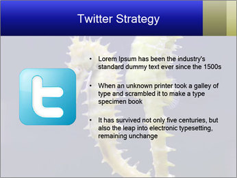 0000060428 PowerPoint Template - Slide 9