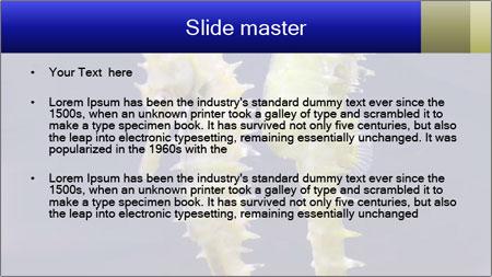 0000060428 PowerPoint Template - Slide 2