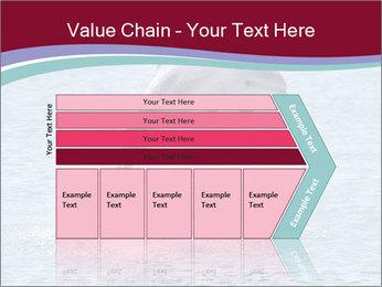 0000060433 PowerPoint Templates - Slide 27