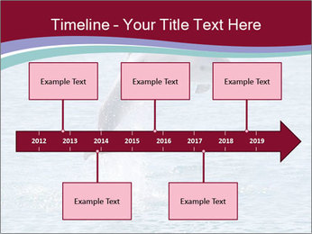 0000060433 PowerPoint Template - Slide 28