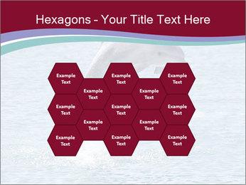 0000060433 PowerPoint Templates - Slide 44