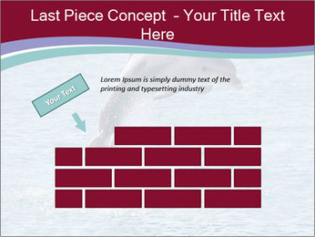 0000060433 PowerPoint Template - Slide 46