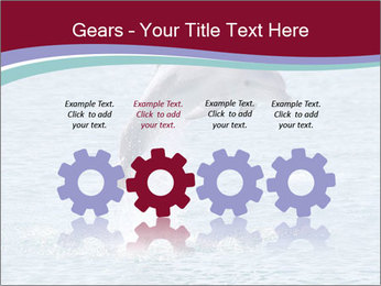 0000060433 PowerPoint Templates - Slide 48