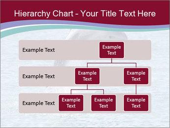 0000060433 PowerPoint Templates - Slide 67