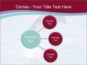 0000060433 PowerPoint Templates - Slide 79
