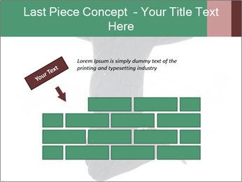 0000060441 PowerPoint Templates - Slide 46