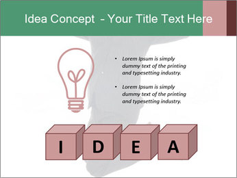 0000060441 PowerPoint Templates - Slide 80