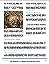 0000060445 Word Templates - Page 4