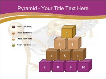 0000060469 PowerPoint Templates - Slide 31
