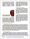 0000060472 Word Template - Page 4