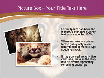 0000060473 PowerPoint Template - Slide 20