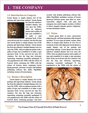 0000060473 Word Template - Page 3
