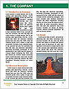 0000060481 Word Template - Page 3