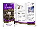 0000060482 Brochure Templates