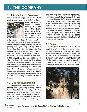 0000060487 Word Template - Page 3