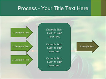 0000060488 PowerPoint Template - Slide 85