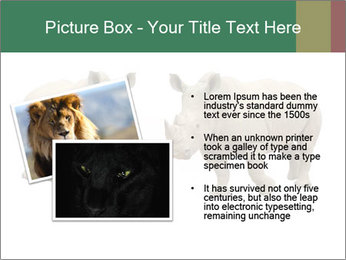 0000060504 PowerPoint Templates - Slide 20
