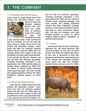 0000060504 Word Template - Page 3