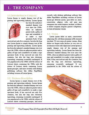 0000060506 Word Template - Page 3