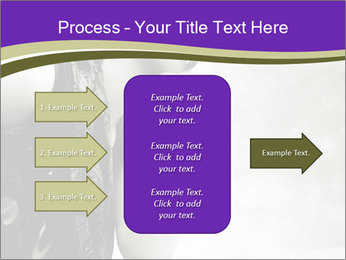 0000060509 PowerPoint Template - Slide 85