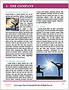 0000060513 Word Template - Page 3