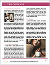 0000060516 Word Template - Page 3