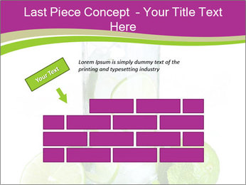 0000060518 PowerPoint Template - Slide 46