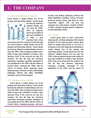 0000060518 Word Template - Page 3
