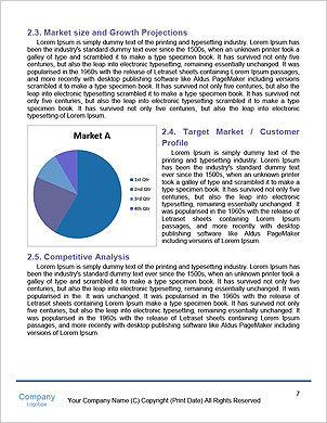 0000060526 Word Template - Page 7
